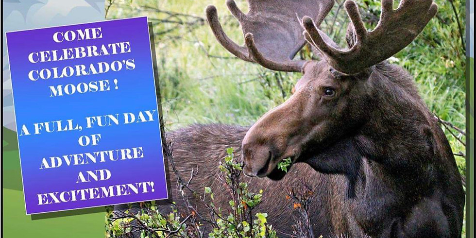 Moose Festival by State forest State Park