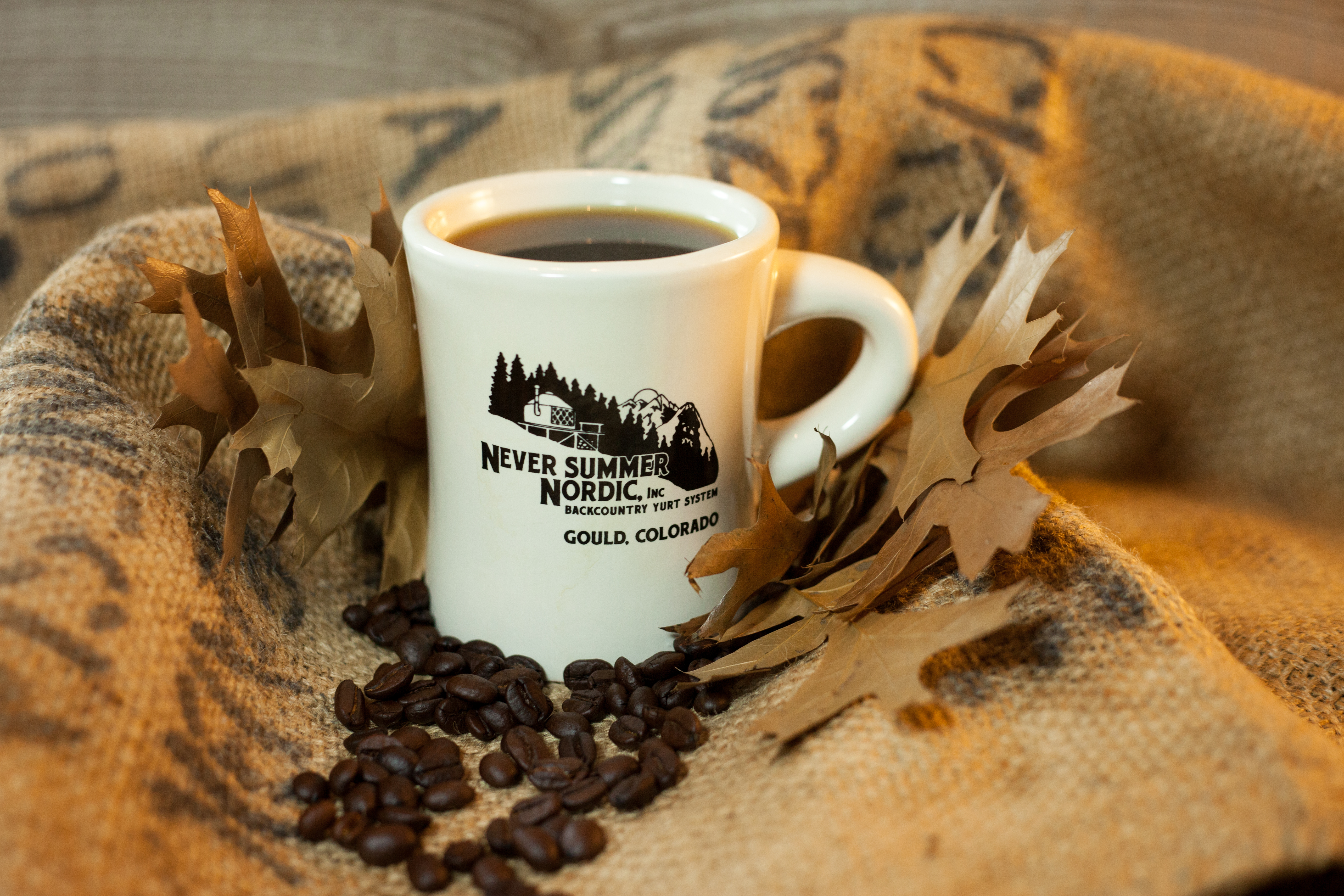NSN Coffee Mug