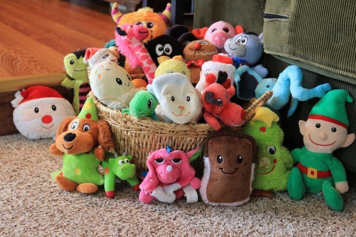 kiero.co   mascotas   decoración   animales y mascotas