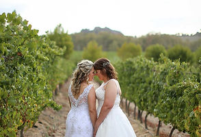 Paarl Wedding by Anel Nortier Photography