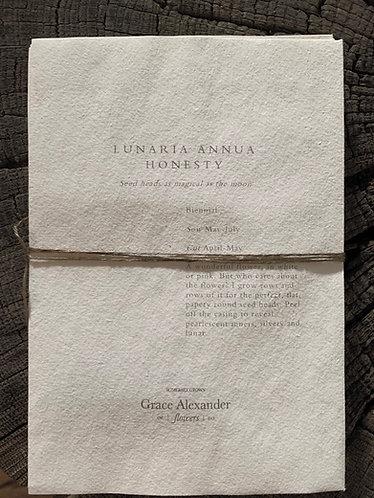 GRACE ALEXANDER SEEDS - HONESTY LUNARIA ANNUA