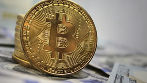 How much Bitcoin should I own.
