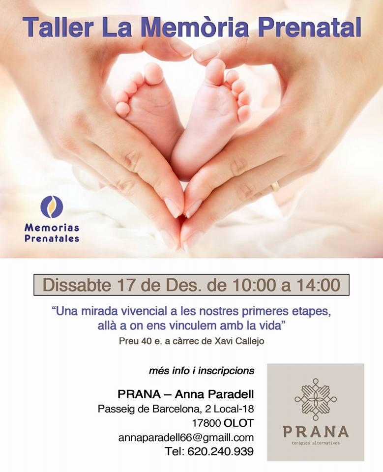La memòria prenatal