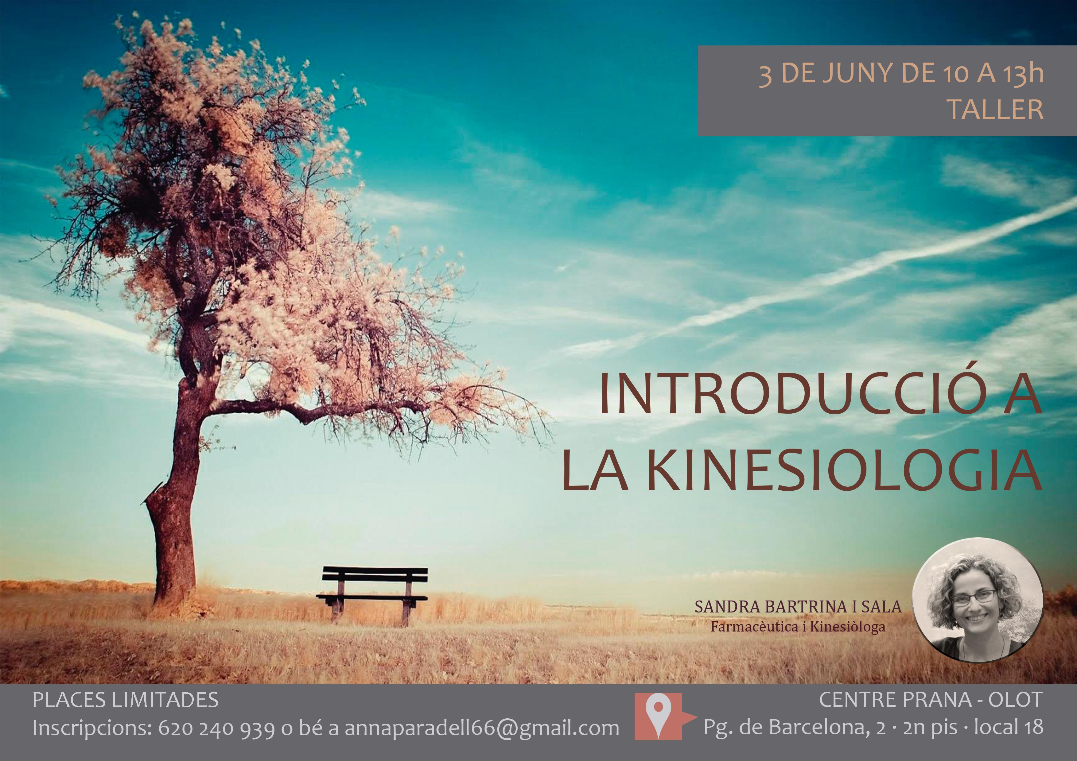 Introducció a la Kinesiologia