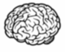 40-405306_png-file-svg-brain-icon-transp