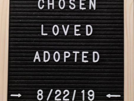 Adoption: Reality vs. Expectation