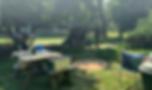 Screen Shot 2019-08-04 at 12.07.13 PM.pn