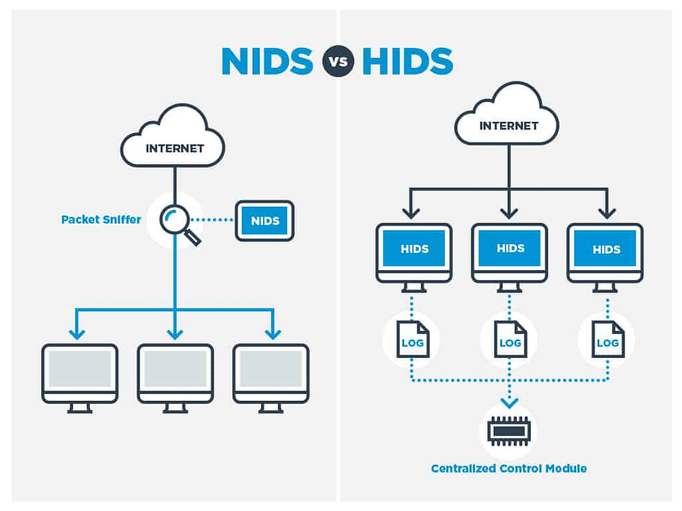 NIDS-vs-HIDS.jpg