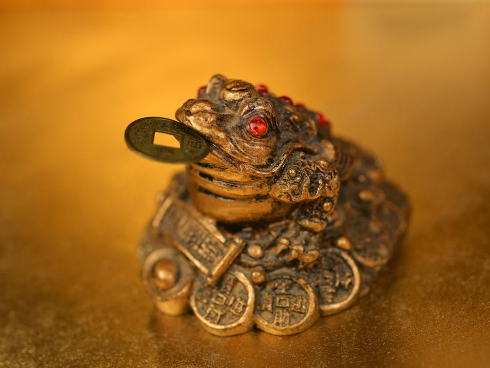 The Money Frog