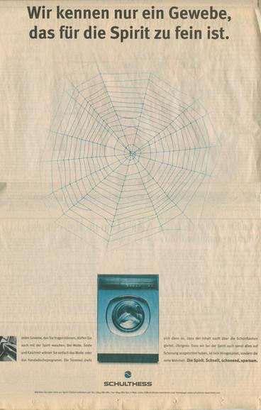 Schulthess Spinnennetz 1999