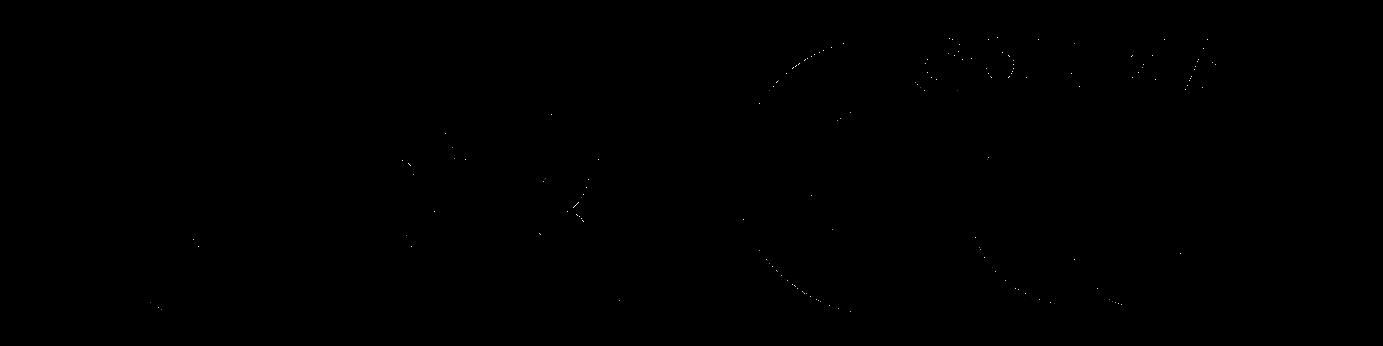 errecicliblack