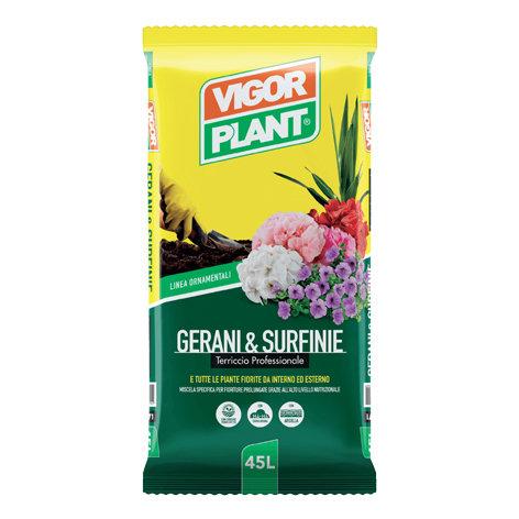 VIGORPLANT - Gerani e Surfinie