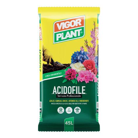 VIGORPLANT - Acidofile