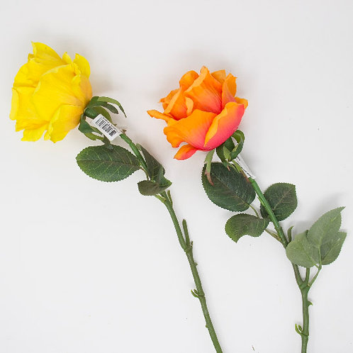 SINGLE QUEEN ROSE