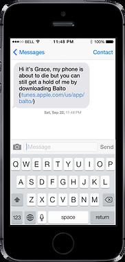 Balto Chat Message