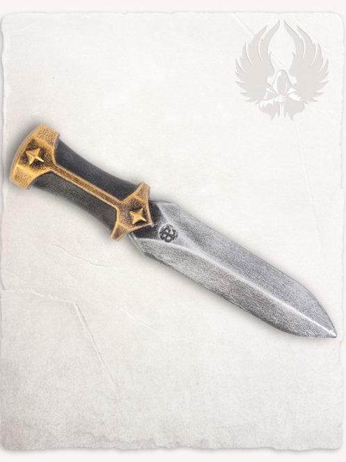 Dague de Jet FERRO deluxe 22.5cm (A)