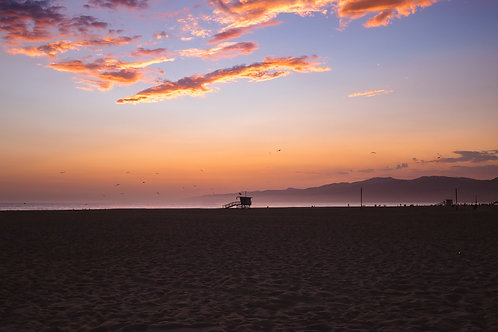 Venice Beach Print