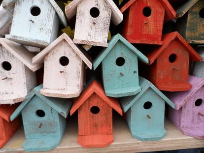 Tiny House - een kritische analyse (1)