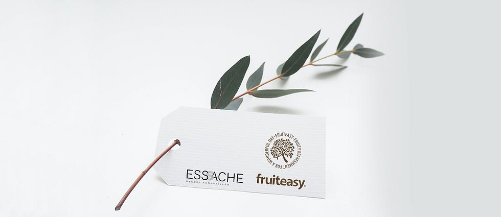 Zweig_2-mit-Logos-fruiteasy-und-ESSACHE.