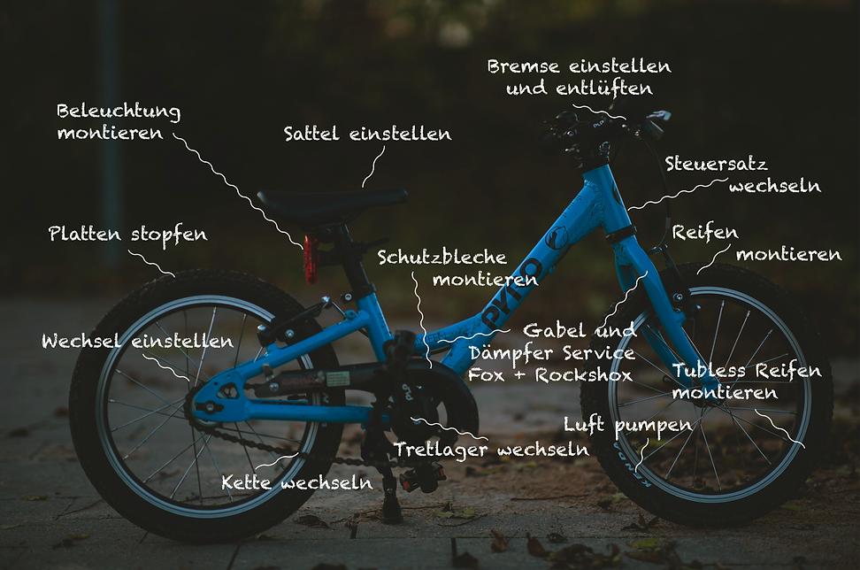 Bike-&-Repair-Dienstleistungen_1k.png