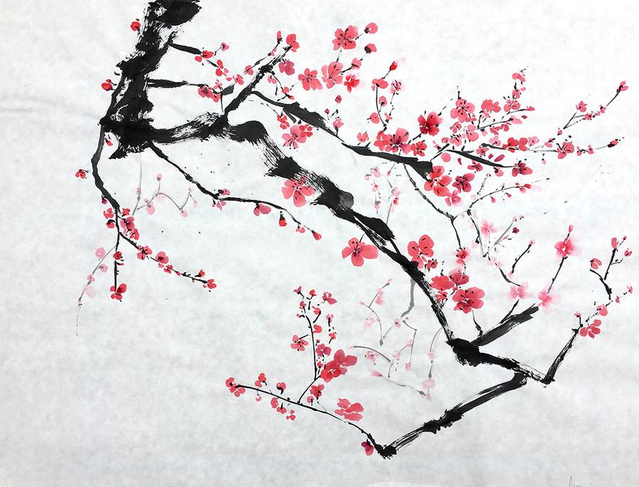 """Sakura Composition n.9"""