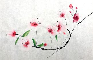 """Cherry Blossom n.10"""