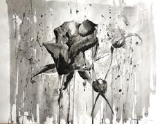 """Black Rose"""