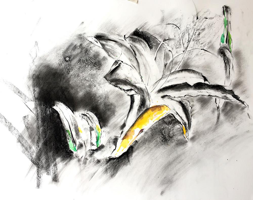 Sketch sketch no title