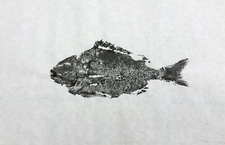 """Golden Fish n.2"""