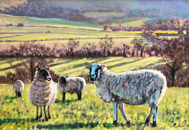 sheep commission 2
