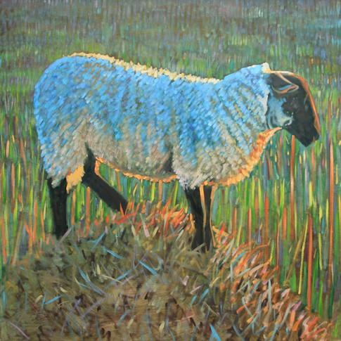Evening sheep on straw No2