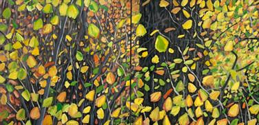 Autumn leaves No2