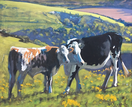Cow and calf on Summer Down No3