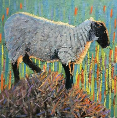 Evening sheep on straw No4