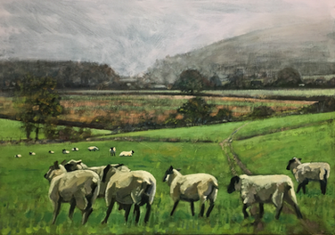 Sheep trotting away