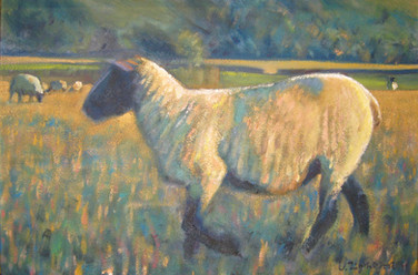 Autumn sheep No.3