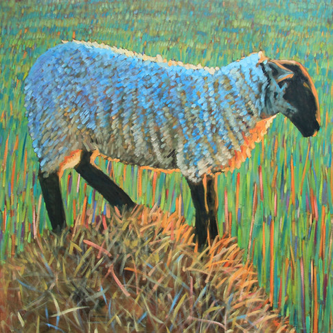 Evening sheep on straw No3