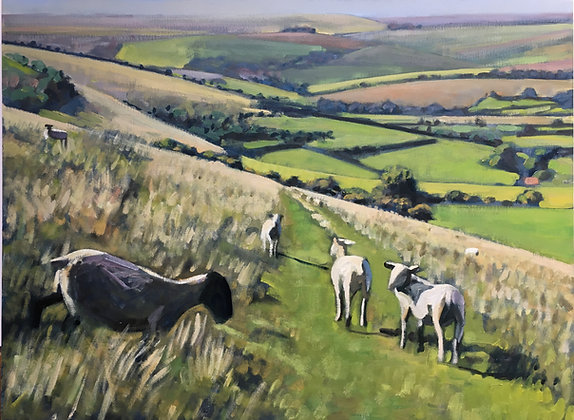 Sheep above Upper Beeding