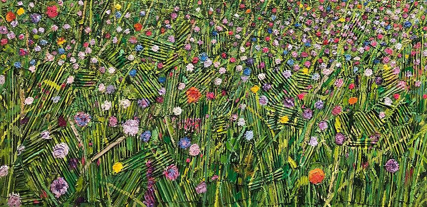 Flowers, Ile de Ré, France