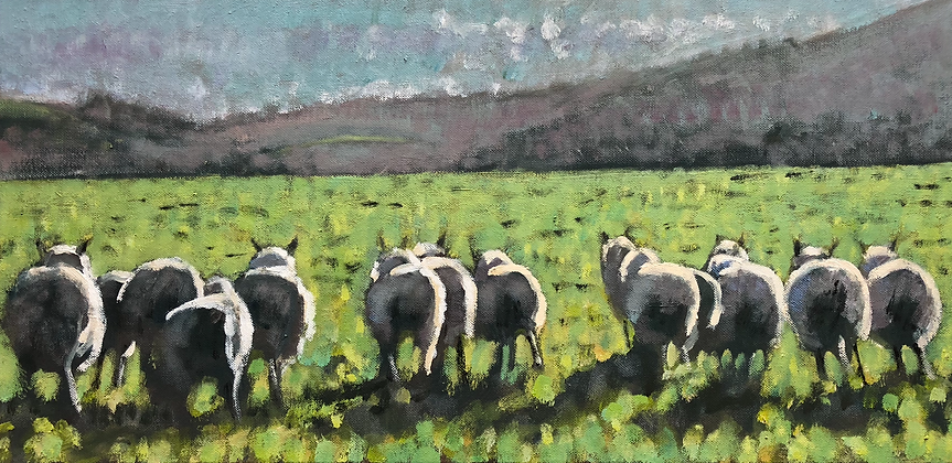 Line of sheep