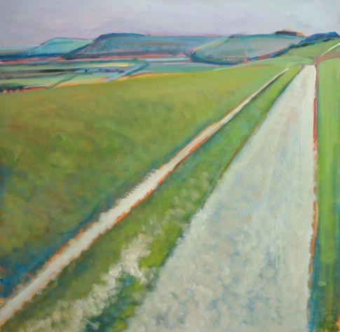 South Downs Way No3