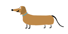 Happy Dachshund with blue collar reduced