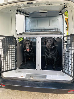 Trans K9 crate - Cheshire dog walkers