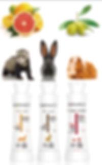 小動物シャンプー画.jpg