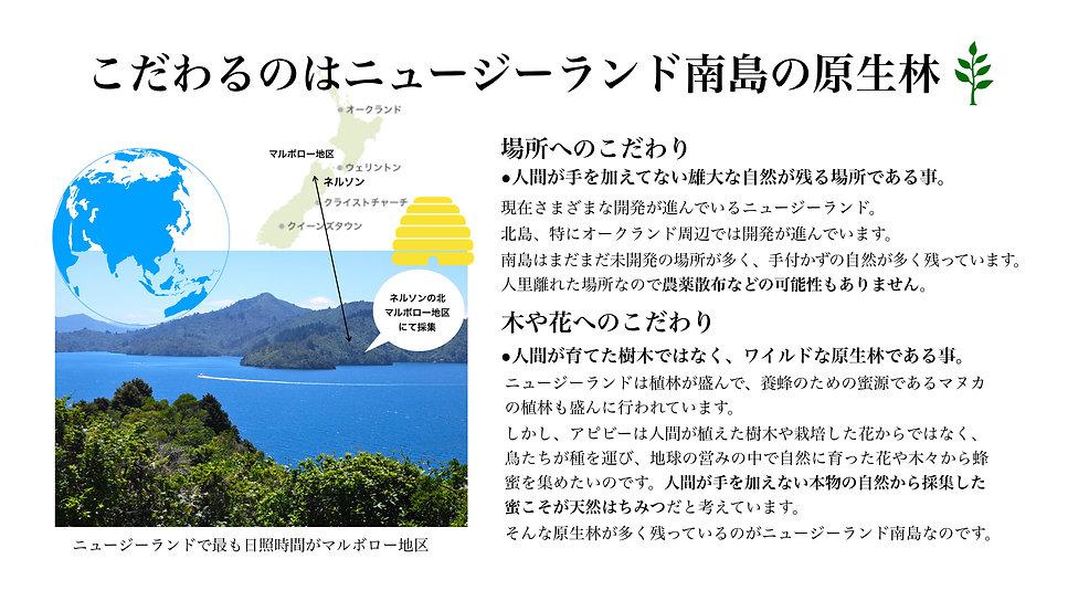apbeeマヌカハニーリリース_2019.013.jpeg