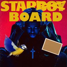 Is it Bird or Board?