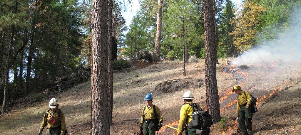 Mendocino County Fire Safe Council