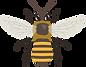 bee-5522458_1280.png