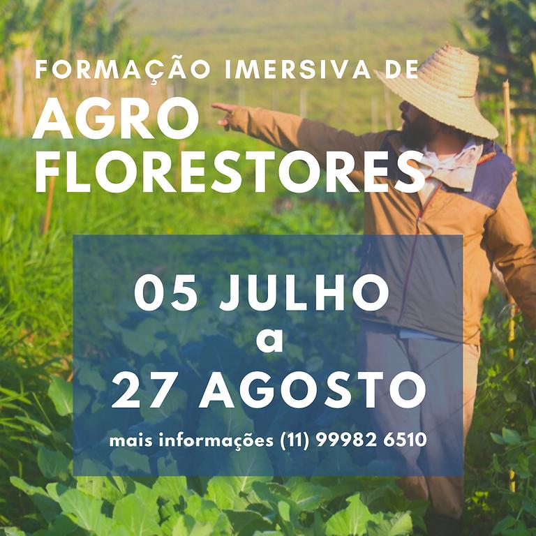 FORMAÇÃO IMERSIVA de AGROFLORESTORES