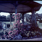 The original Bandstand,from David Bury